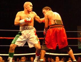 Карлос Молина се завръща на ринга