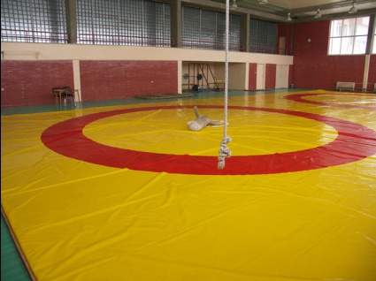 Трима български борци ще участват на турнир в Якутия