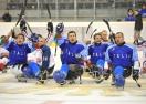 Хокеист от параолимпийския отбор на Италия е уличен в употреба на допинг