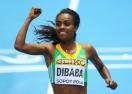 Гензебе Дибаба преследва световна титла и рекорди през 2015-а