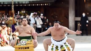Хакухо е номер 1 по титли в сумото