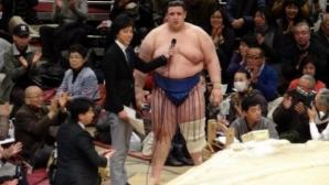 Нашият Аоияма се срина с два ранга