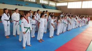 Гръцка легенда и майстор от Корея водят тренировки по таекуондо WTF в София