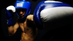 Хамбург ще бъде домакин на световното първенство по бокс през 2017-а