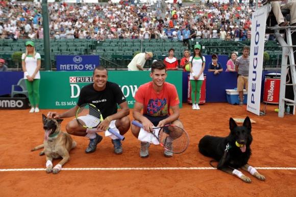 Тенис и кучета (видео + снимки)
