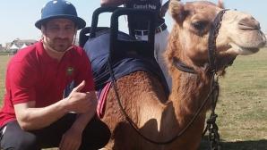 Бодуров яхна камила