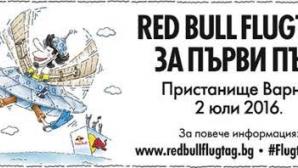 Български Н.Л.О. обекти излитат на Red Bull Flugtag тази събота