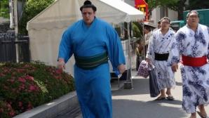 Аоияма ще завърши с положителен баланс на турнира в Нагоя