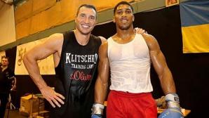 Кличко и Джошуа ще се бият за 33 милиона евро
