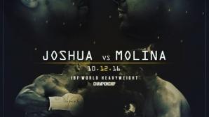 Дионтей Уайлдър: Молина може да победи Джошуа
