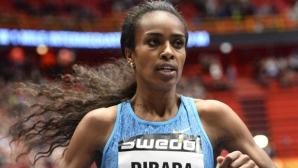 Дибаба атакува световния си рекорд на 1500 м в Торун