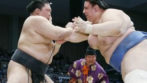 Даниел Иванов бие за шести път на турнира по сумо в Токио