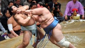 Аоияма взе осма победа, Кисеносато си осигури първа титла