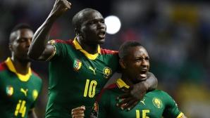 Шампионът на Африка остава без старши треньор
