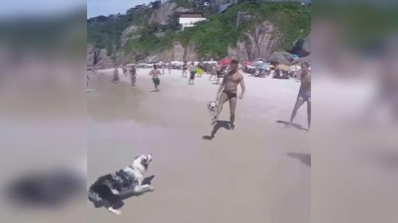 Куче показа завидни умения с топка