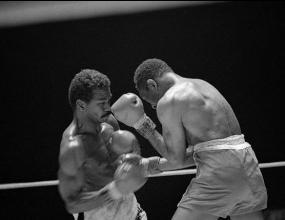 """Кубински звезди в """"Легендите на бокса"""""""