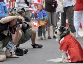 В Германия се появиха футболни фланелки от Евро 2008 за кучета