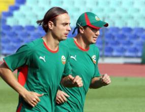 Играчите на Босна и Херцеговина струват колкото Бербатов