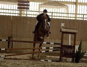 55 ездачи и 115 коне ще участват в Световна купа по конен спорт