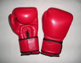 Анкара взе от София ЕП по бокс