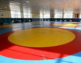 Дубов и Средков с лесни победи на държавното първенство по борба