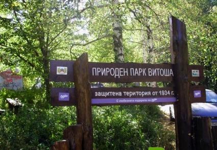 """Отбелязват 80-годишнината на Природен парк """"Витоша"""" със спортен празник"""