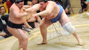 Аоияма изравни баланса в Осака