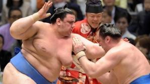 Аоияма записа трета победа на турнира по сумо в Токио
