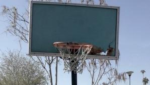 Баскетболни истории и надежди