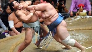 Десета победа за Аоияма на турнира по сумо в Нагоя