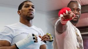 Антъни Джошуа е най-добре платеният боксьор