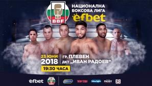 """Арате и братя Асенови повеждат """"Лъвовете"""" в боксовата лига"""
