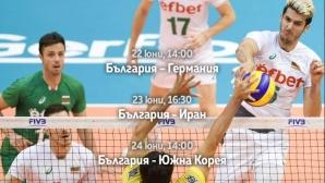 Заключителните мачове на българските волейболисти на живо по MAX Sport 1 и безплатно във Facebook