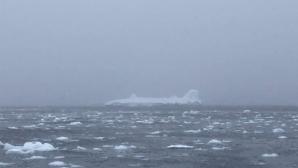 """Забраняват на Петър Стойчев да плува в """"ледена супа"""" на Антарктида"""