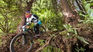 Награждават най-добрите състезатели в планинското колоездене тази събота