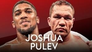 Джошуа срещу Пулев през септември?