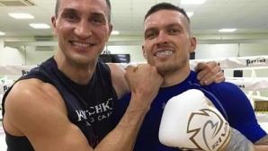 Владимир Кличко помага на Усик в подготовката за дебюта му в тежка категория