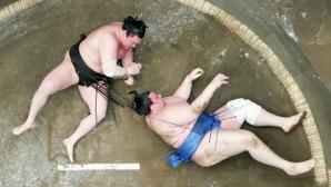 Аоияма завърши с победа на турнира в Осака