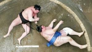 Аоияма завърши със загуба на големия майски турнир в Токио