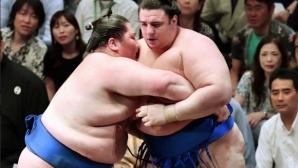 Осма загуба за Аоияма на турнира в Токио
