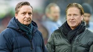 Кьолн назначи нов старши треньор