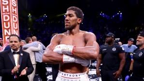 WBO задължи Джошуа да се бие с Усик