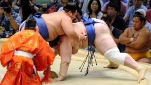 Аоияма с четвърта победа на турнира по сумо в Токио