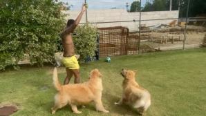 Неймар тренира с кучета в двора си и не иска да чуе за ПСЖ (видео)