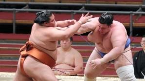 Аоияма постигна трета победа на турнира по сумо в Токио