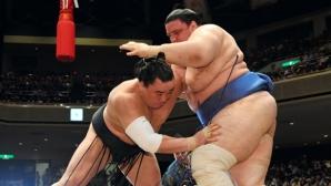 Даниел Иванов - Аоияма завърши с победа турнира по сумо в Токио