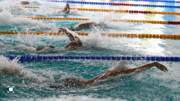 Разследват треньори и лекари за допинг скандала в плуването