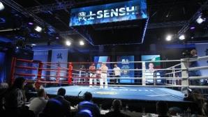 Три български титли, тежки нокаути и много адреналин на SENSHI 7