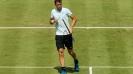 Григор Димитров откри сезона на трева с победа срещу Джумхур