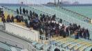 """Пловдивските фенове на националния стадион """"Васил Левски"""""""